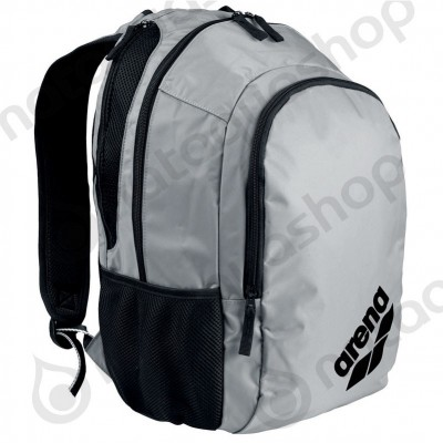 SPIKY 2 BACKPACK silver team